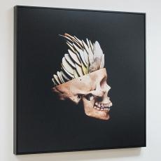 ellingsen-skull