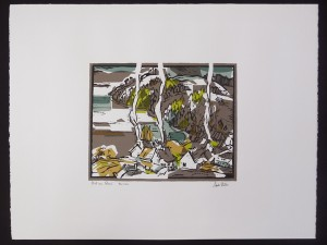 Andre Bieler Print